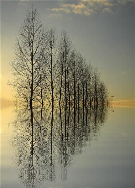 1000 Ideas About Water Reflections On Pinterest Water