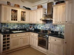 ideas for painted kitchen cabinets painting kitchen cabinets ideas with beautiful colors