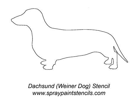 diy jack  lantern designscats rabbits dogs ferrets