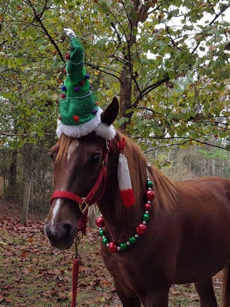 christmas tree hat  horse  pony equine christmas