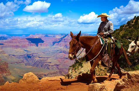 arizona vacation horseback sedona horse tours canyon grand desert ride fiery sonoran nature adventurous vacations trees visit az butterfield through