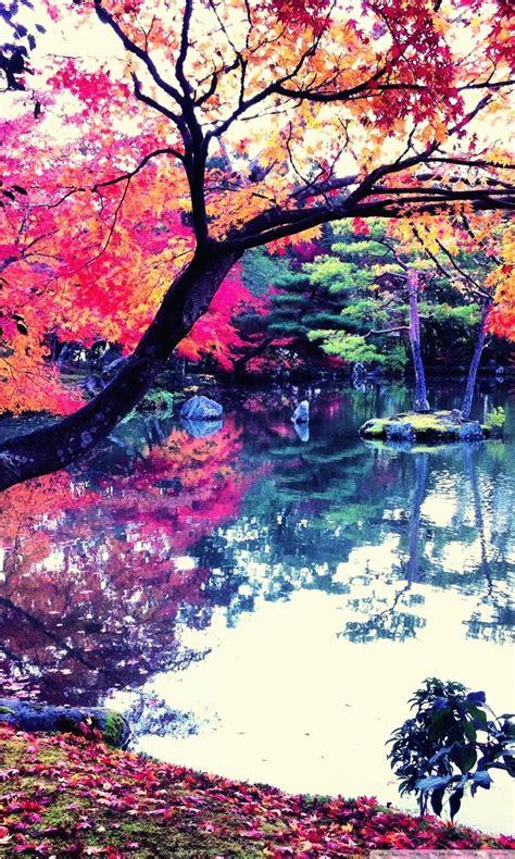 fall  japan ultra hd desktop background wallpaper
