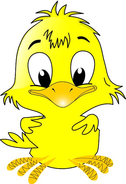 anak ayam paskah hewan gambar vektor gratis  pixabay