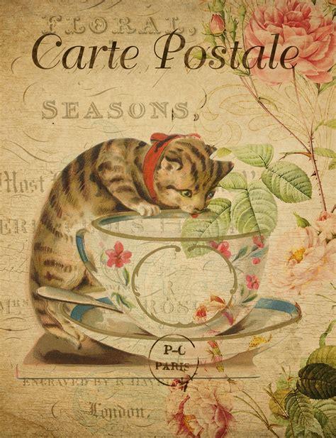 Cat Vintage French Postcard Free Stock Photo Public