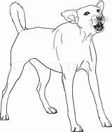 Barking Dog Drawing Angry Vector Clip Bark Illustration Illustrations Getdrawings Istock sketch template