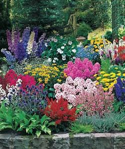 Graminées Vivaces Hautes : plantes vivaces ~ Premium-room.com Idées de Décoration