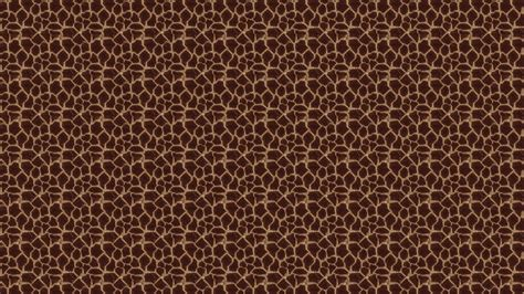 Animal Print Desktop Wallpaper - animal print desktop backgrounds 183