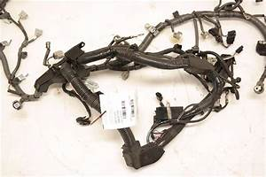 Engine Wire Harness 821210e041 Fits 2015 Lexus Rx350 Oem