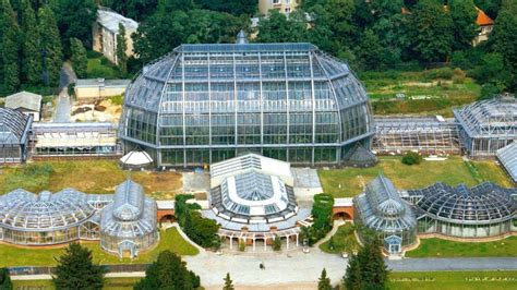 Berlin Botanischer Garten Programm by Victoriahaus Im Botanischen Garten Bleibt Geschlossen