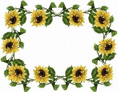 Sunflower Border Borders Frame Clipart Cliparts Flower