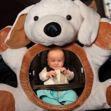 retroviseur siege bebe rétroviseur bébé chien 10 sur allobébé