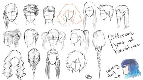 hairstyle references  lillynap  deviantart