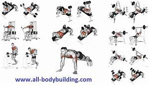 7 Exercises To Develop A Mighty Chest Fast