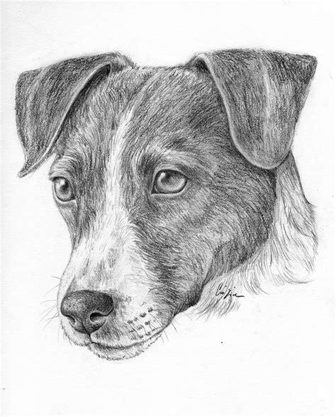 immagini da disegnare a matita matita disegni vari disegno libero