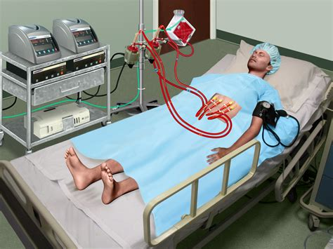 medical images art science graphics