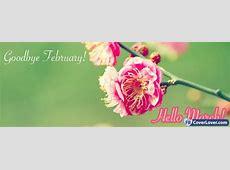 Goodbye February Hello March seasonal Facebook Cover