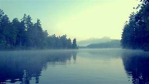 lake, , forest, , mist, wallpapers, hd, , , , desktop, and, mobile
