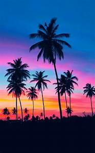 Bilder Von Palmen : 53 erstaunliche sonnenuntergang bilder ~ Frokenaadalensverden.com Haus und Dekorationen