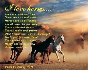 Funny Horse Poems My First Horse Poem Graphics Code My
