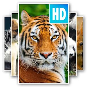 animal wallpaper  apk  android