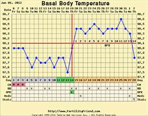 Bbt Chart Of Woman Health Care Services Women 39 S Health Consultants