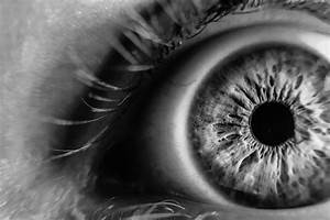 Grayscale Photo of Human Eye · Free Stock Photo