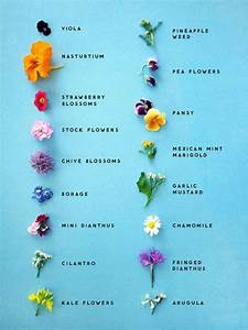 how to use edible flowers this healthy table edible