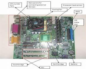 Krish U0026 39 S Blog  Labelled Motherboard