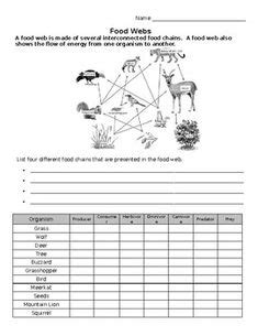 worksheets food chains and food webs science food web worksheet food chain worksheet