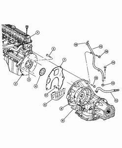 Jeep Wrangler Plate  Drive Plate  Converter  Crankshaft  Erh