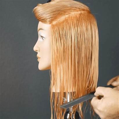 Face Shag Framing Haircut Section Horseshoe Clip