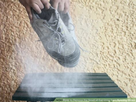 Remove Cat Urine Smell From by How To Remove The Smell Of Cat Urine From Running Shoes 7