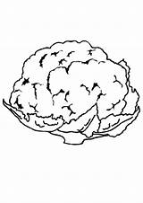 Cauliflower Coloring Sheets Vegetable Printable Sketch Template Indiaparenting sketch template