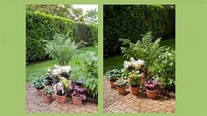 Plantes En Pot Pour Terrasse : composer un massif de fleurs pour votre terrasse ~ Dailycaller-alerts.com Idées de Décoration