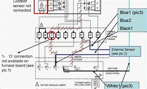 Newest Ls Wiring Harness Diagram New Ls Standalone Wiring Harness Diagram Diagram Diagram For