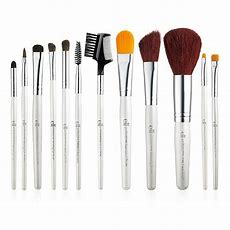 Elf Essential Professional Compete Brush Set Of 12 Piece Brushes Elf Makeup Ebay