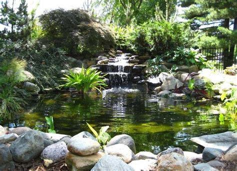 cascade bassin de jardin  idees creer votre havre de