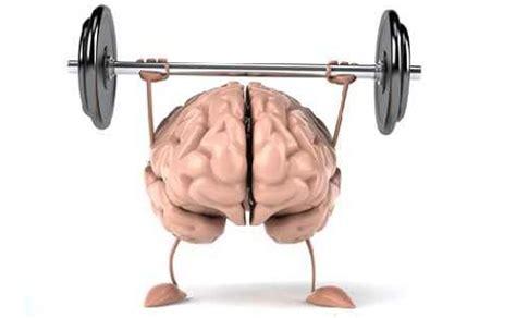 Workshop Neurowissenschaft bewegt  Hirnforschung in