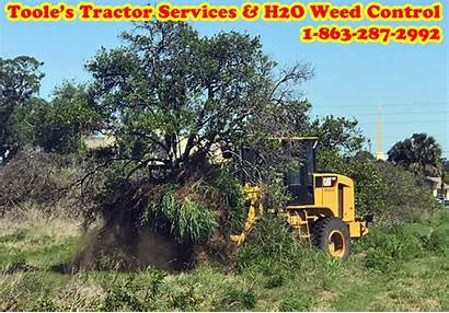 Land Clearing Services Florida Tractor Job Central