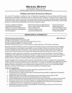 cio chief information officer resume With cio resume template