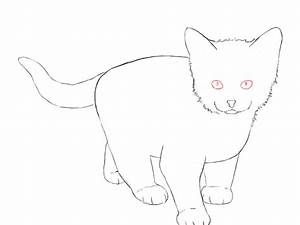 Drawing Pictures: Kitten Drawing Pictures