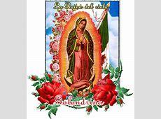 Guadalupe Imagenes librakko