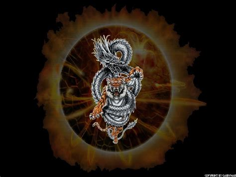 fondo tiger  dragon en fondos de pantalla