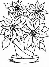Coloring Flower Flowers Pages Poinsettia Flowerpot Christmas Clipart Charming Vase Pot Cliparts Outline Clip Printable Drawings Library Sketches Scenes Sheet sketch template