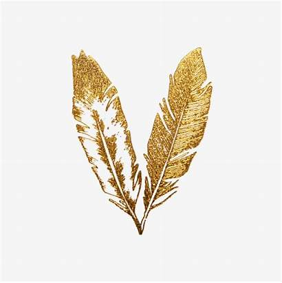 Clipart Feathers Feather Transparent Golden Tattoos Tattoo