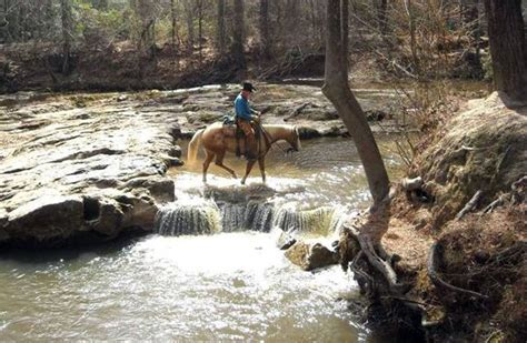 Sw Boat Rides Louisiana by Some Of Louisiana S Best Trails In The Kisatchie