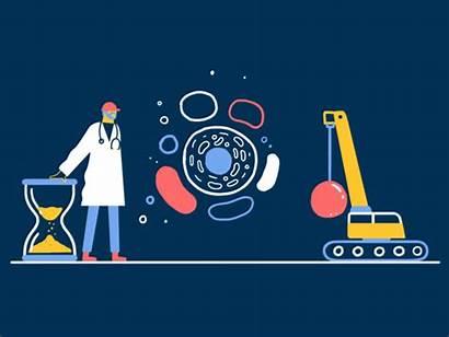 Science Health Animation Elysium Dribbble Medium Fasting