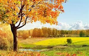 Bilder Herbst Kostenlos : die 66 besten herbst hintergrundbilder ~ Somuchworld.com Haus und Dekorationen