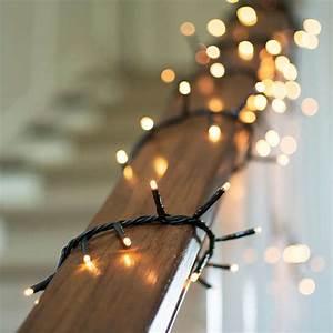 11, Best, Outdoor, Holiday, Lights, For, 2015, Gardenista