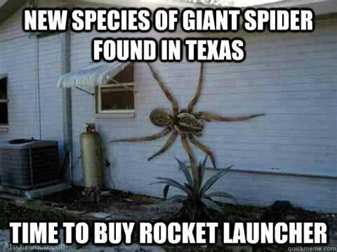 Spider In House Meme - nope time to buy a weapon shed with food to last for years my new home lol pinterest